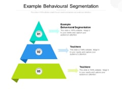 Example Behavioural Segmentation Ppt PowerPoint Presentation Model Professional Cpb