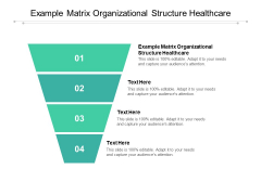 Example Matrix Organizational Structure Healthcare Ppt PowerPoint Presentation Pictures Designs Download Cpb Pdf
