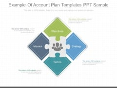Example Of Account Plan Templates Ppt Sample