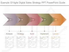 Example Of Agile Digital Sales Strategy Ppt Powerpoint Guide