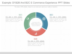 Example Of B2b And B2c E Commerce Experience Ppt Slides