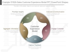 Example Of B2b Sales Customer Experience Model Ppt Powerpoint Shapes