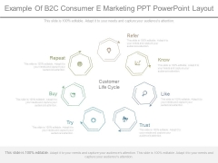 Example Of B2c Consumer E Marketing Ppt Powerpoint Layout