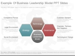 Example Of Business Leadership Model Ppt Slides