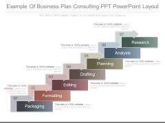 Example Of Business Plan Consulting Ppt Powerpoint Layout