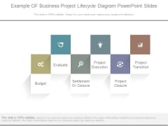 Example Of Business Project Lifecycle Diagram Powerpoint Slides