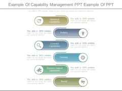 Example Of Capability Management Ppt Example Of Ppt