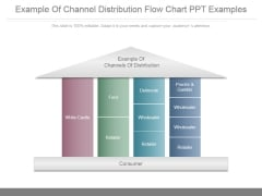 Example Of Channel Distribution Flow Chart Ppt Examples