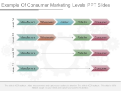 Example Of Consumer Marketing Levels Ppt Slides