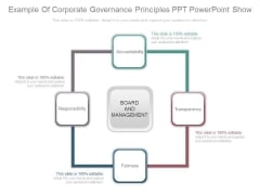 Example Of Corporate Governance Principles Ppt Powerpoint Show