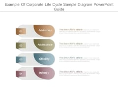 Example Of Corporate Life Cycle Sample Diagram Powerpoint Guide