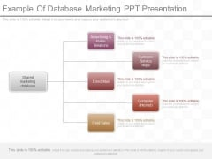 Example Of Database Marketing Ppt Presentation