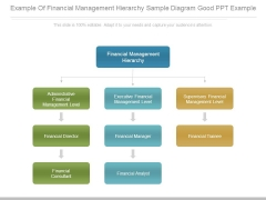 Example Of Financial Management Hierarchy Sample Diagram Good Ppt Example