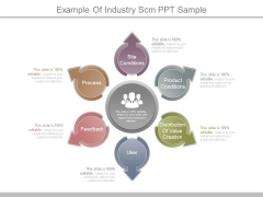 Example Of Industry Scm Ppt Sample