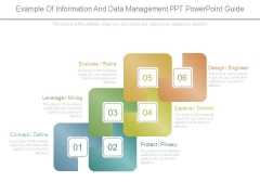 Example Of Information And Data Management Ppt Powerpoint Guide