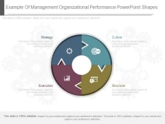 Example Of Management Organizational Performance Powerpoint Shapes