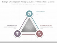 Example Of Management Strategy Evaluation Ppt Presentation Examples