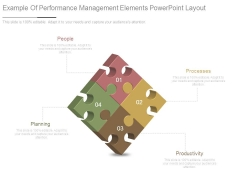 Example Of Performance Management Elements Powerpoint Layout