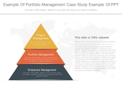 Example Of Portfolio Management Case Study Example Of Ppt