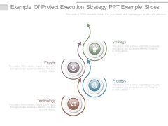 Example Of Project Execution Strategy Ppt Example Slides
