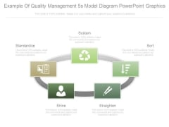 Example Of Quality Management 5s Model Diagram Powerpoint Graphics