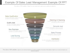 Example Of Sales Lead Management Example Of Ppt