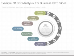 Example Of Seo Analysis For Business Ppt Slides