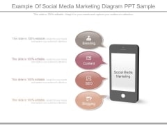 Example Of Social Media Marketing Diagram Ppt Sample