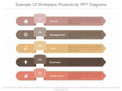 Example Of Workplace Productivity Ppt Diagrams