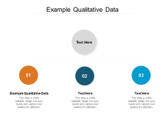 Example Qualitative Data Ppt PowerPoint Presentation Infographic Template Tips Cpb