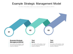 Example Strategic Management Model Ppt PowerPoint Presentation Styles Cpb