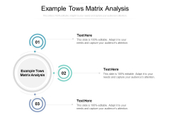 Example Tows Matrix Analysis Ppt PowerPoint Presentation Icon Inspiration Cpb