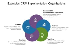 Examples CRM Implementation Organizations Ppt PowerPoint Presentation Infographics Microsoft Cpb