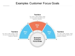 Examples Customer Focus Goals Ppt PowerPoint Presentation Show Tips Cpb