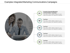 Examples Integrated Marketing Communications Campaigns Ppt PowerPoint Presentation Inspiration Shapes Cpb