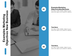 Examples Marketing Objectives New Business Ppt PowerPoint Presentation Slides Inspiration Cpb