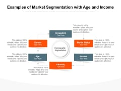Examples Of Market Segmentation With Age And Income Ppt PowerPoint Presentation File Slideshow PDF