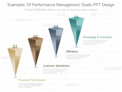Examples Of Performance Management Goals Ppt Design