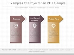 Examples Of Project Plan Ppt Sample