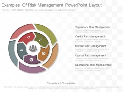 Examples Of Risk Management Powerpoint Layout