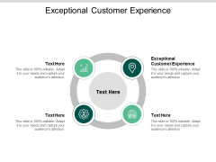 Exceptional Customer Experience Ppt PowerPoint Presentation Icon Introduction Cpb
