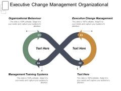 Executive Change Management Organizational Behaviour Management Training Systems Ppt PowerPoint Presentation Slides Format Ideas
