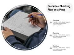 Executive Checking Plan On A Page Ppt PowerPoint Presentation Gallery Guide PDF