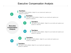 Executive Compensation Analysis Ppt PowerPoint Presentation Show Styles Cpb