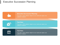 Executive Succession Planning Ppt PowerPoint Presentation Portfolio Layouts Cpb