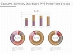 Executive Summary Dashboard Ppt Powerpoint Shapes