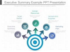 Executive Summary Example Ppt Presentation