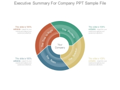 Executive Summary For Company Ppt Sample File