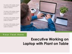 Executive Working On Laptop With Plant On Table Ppt PowerPoint Presentation Ideas Portfolio PDF