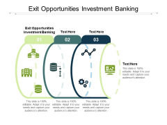 Exit Opportunities Investment Banking Ppt PowerPoint Presentation Portfolio Display Cpb Pdf